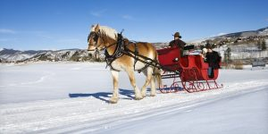Colorado Sleigh Ride