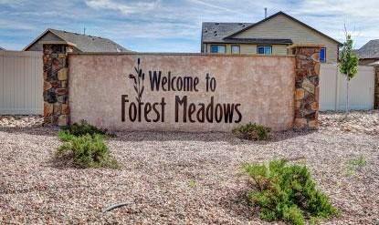 Forest Meadows in Colorado Springs